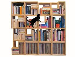 cat library a feline friendly shelving system mnn mother