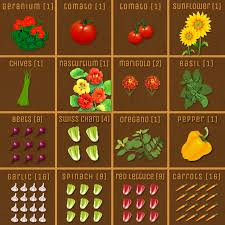 Companion Planting Garden Layout Square Foot Gardening Vegetables Just Got A Whole Lot Easier