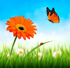 summer grass with flower and butterfly background vector free