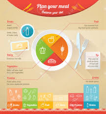plan your meal infographic with dish chart and icons healthy