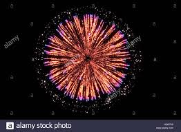 orange firework on black background for celebration merry