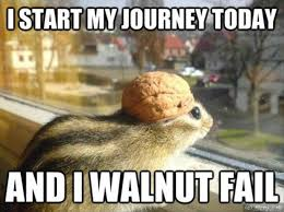 Squirrel Meme - i start my journey today and i walnut fail funny animal squirrel