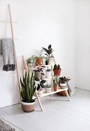 Home Plant Decor by Diy Ladder Plant Stand Plants Bedrooms And Room
