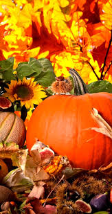 thanksgiving wallpaper android fruits and vegetables from autumn season hd wallpaper