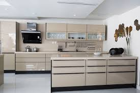 Modern Style Kitchen Cabinets Kitchen Polished Modern Kitchen With Glass Front Cabinets
