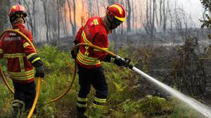 Wildfire Song Mtv by Portugal Fire Officials Await Water Dropping Planes From Spain