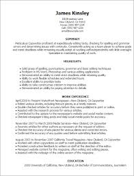 Copywriter Resume Template Professional Copywriter Templates To Showcase Your Talent