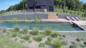 aquascapes pools biotop natural pools aquascapes pool in the usa youtube