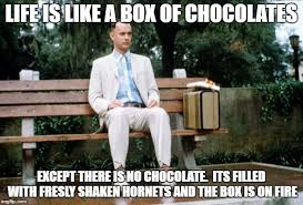 Forrest Gump Rain Meme - forrest gump rain meme 28 images 25 best memes about forrest