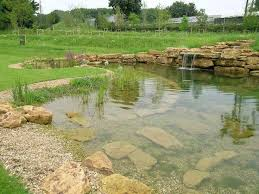 Natural Swimming Pool Natural Swimming Pools Natural Swimming Pools Lake And Pond