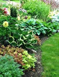 Small Garden Plants Ideas Best Plants For Small Garden Plants For Small Garden Borders Best