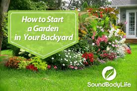 collection how to start a small vegetable garden in your backyard