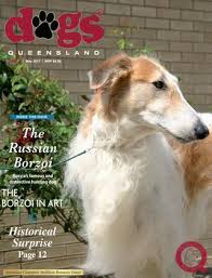 australian shepherd club qld dogs queensland the queensland dog world issue 5 may 2017