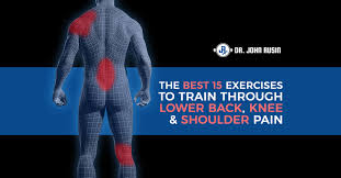 the 15 best exercises to train through low back knee u0026 shoulder pain
