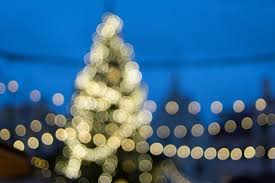 awesome picture of one little christmas tree stevie wonder