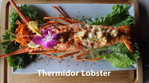 martini lobster thermidor lobster casablanca seafood bar u0026 grill