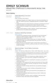 Consulting Resume Sample by Download Digital Strategist Resume Haadyaooverbayresort Com