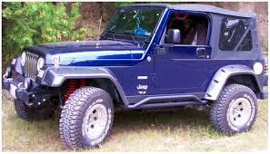 purple jeep no doors trail armor bushwacker