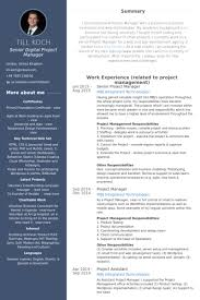 It Director Resume Examples by Bold Design Ideas Senior Project Manager Resume 9 Senior It