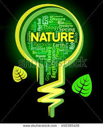 green light bulb meaning nature words meaning light bulb countryside stock illustration
