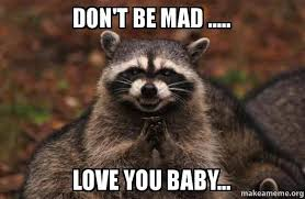 Dont Be Mad Meme - don t be mad love you baby evil plotting raccoon make