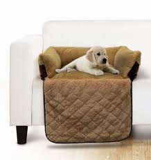 Pet Chair Covers The 25 Best Pet Couch Cover Ideas On Pinterest Pet Sofa Cover