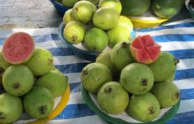 a guide to the fruit in brazil