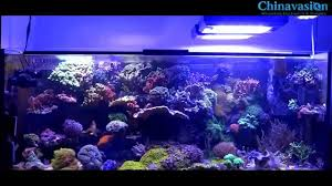 led lights for coral tanks dimmable led aquarium light for coral fish tank 165w 148 99