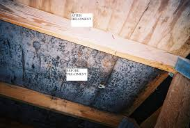 mold in attic mold inspection u0026 testing