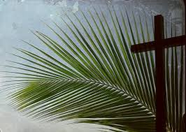 palm for palm sunday palm sunday