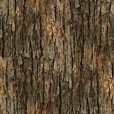 second marketplace texture perm tree bark 1 seamless