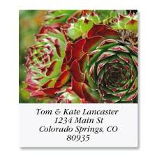 southwest address labels colorful images
