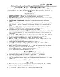 Examples Of Resumes For Customer Service Jobs by Top 8 Travel Agency Manager Resume Samples Ad Cool Learning To