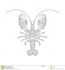 49 best hello the lobster images on pinterest lobsters giant