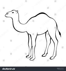 camel black white isolated illustration vector stock vector