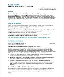 resume sample profile effective experience and expertise for