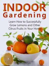 cheap herb indoor garden find herb indoor garden deals on line at