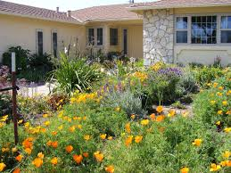 lawn u0026 garden elegant landscaping for front yard with green