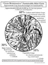 ecology action grow biointensive