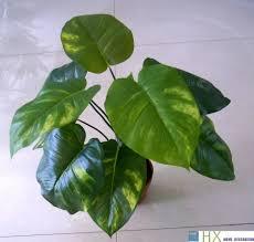 wholesale 13 leaves pcs scindapsus aureus plants artificial tree