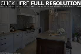 Black And White Kitchen Transitional Kitchen by Cabinet Transitional Kitchen Design Ideas Transitional Kitchens