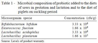 Sow Gestation Table Probiotics And Antibiotics As Additives For Sows And Piglets