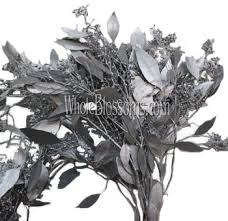 silver flowers silver seeded eucalyptus flower filler at wholesale prices