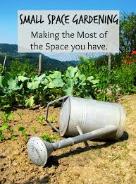 small space garden ideas making the most of your space