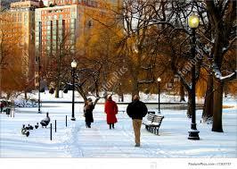 picture of boston public garden winter