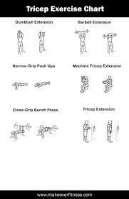 bicep tricep workout routine dumbbells workout everydayentropy com