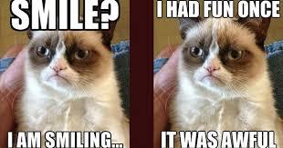 Grumpy Cat Meme I Had Fun Once - fans of carolyn deangelis felt ornaments grumpy cat