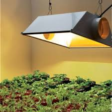 indoor garden lights home depot indoor potting soil growing mix available home depot ace
