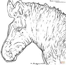 andy warhol coloring pages in andy warhol coloring pages learn