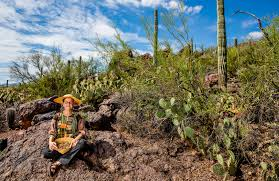Arizona forest images Our abundant desert forest edible baja arizona magazine jpg